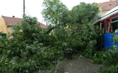 O furtuna a facut ravagii la Arad