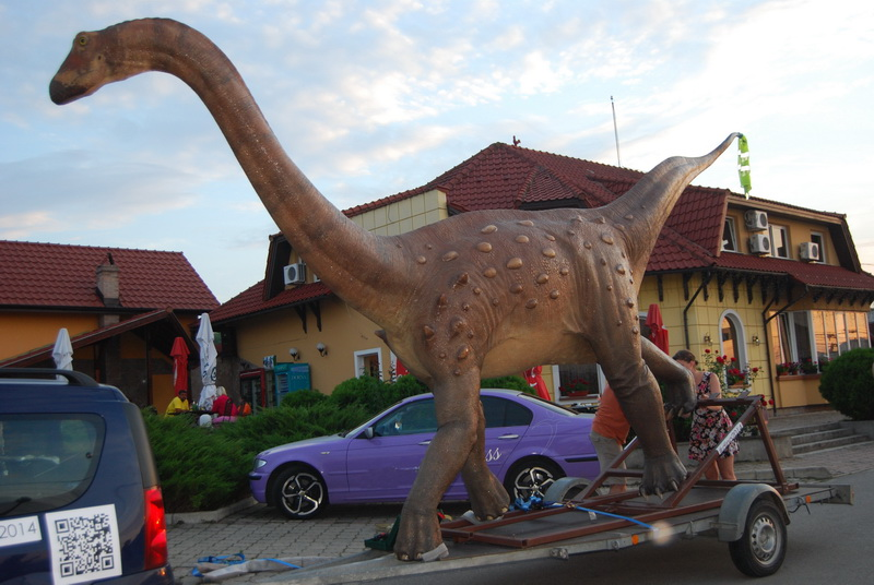 Macheta dinozaur Magyarosaurus dacus