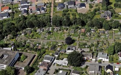 Timișorenii ar putea avea primele grădini urbane cu legume și flori
