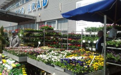 Flori, produse de grădinărit și lichidări de stocuri! Începe Târgul Primăverii la Arad