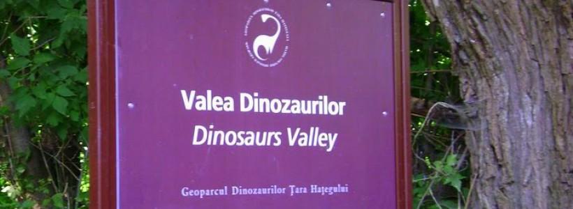 Turiştii care ajung în această vară în Geoparcul Dinozaurilor Ţara Haţegului din judeţul Hunedoara vor putea călca pe urmele dinozaurilor pitici. Pentru acest lucru, turiştii trebuie să urmeze traseul potecii tematice 'Valea Dinozaurilor', pe un drum de opt kilometri.