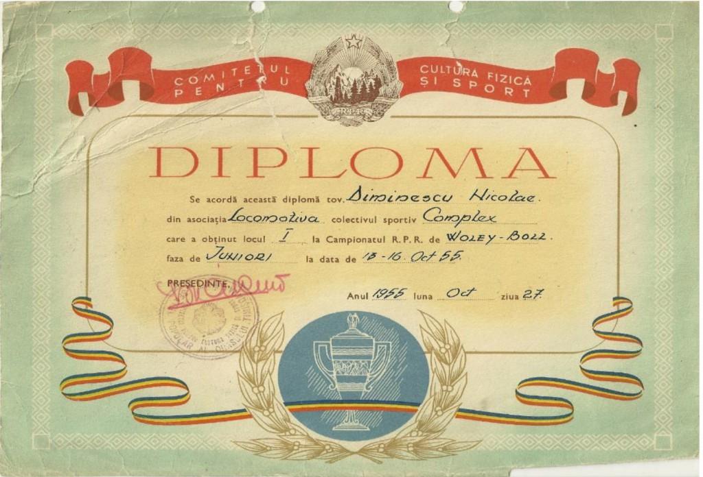 nicolae-diminescu-diploma