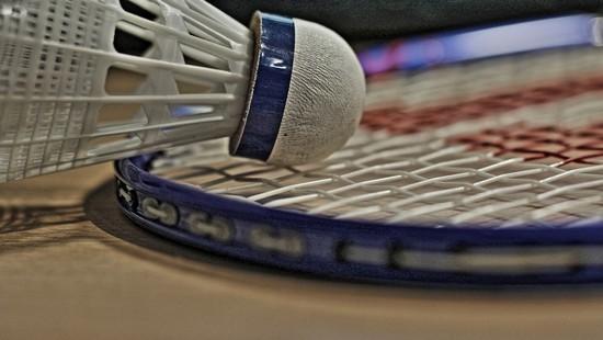 badminton ev