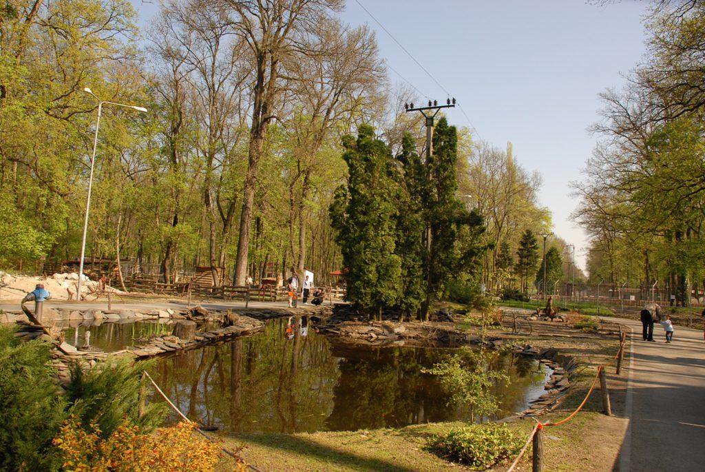 Foto: http://cjtimis.ro/