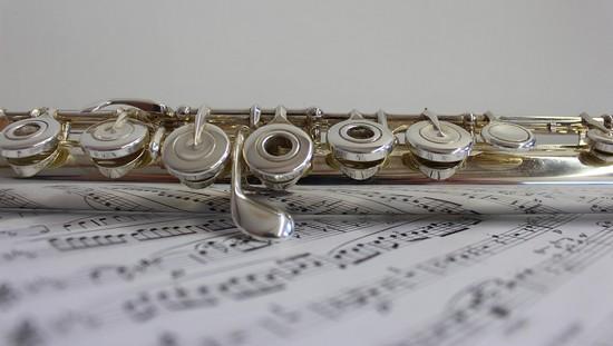 flaut ev