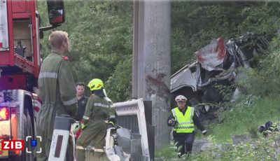 Cinci cetăţeni români au murit, iar trei au fost răniţi într-un accident produs astăzi lângă Viena.